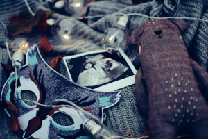 baby scan